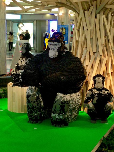 クリスタル広場:東山動植物園の80周年をPRするため、同園の有名なイケメンゴリラ「シャバーニ」のレゴ像を設置 - 4