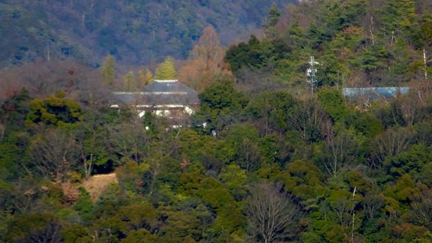 犬山城から見た善光寺 - 3