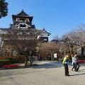写真: 犬山城前から見上げた天守閣 - 6