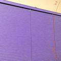 写真: 多機能写真・動画撮影&編集アプリ「Musemage」- 5:指定した色を置き換えれる「マジックカラー」(横持ち)