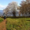写真: 飯田高森松岡城跡(絶景かな絶景かな)