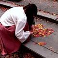 写真: 落ち葉でハートを描く少女