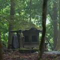Photos: 林の中に佇む