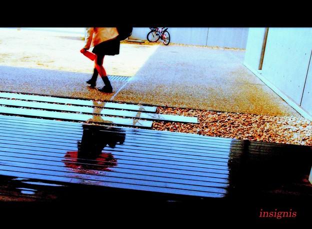 Photos: Follow you follow me.......