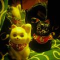 『第109回モノコン』招き猫.....