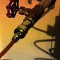 写真: 『第117回モノコン』グローブバルブ.......