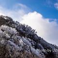 写真: U2250183-1