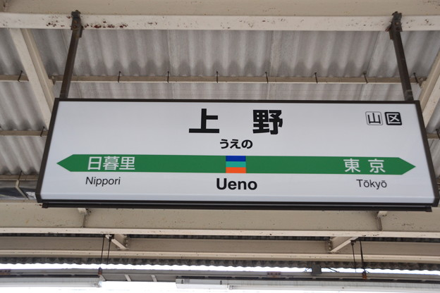 9番線駅名標 [上野東京ライン・常磐線 上野駅]