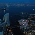青に染まる横浜