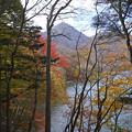 Photos: 社山を望む827sc