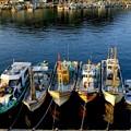 Photos: 朝陽の漁港