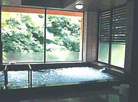 1992年2月9日・母を連れて行った、平賀源内が発見した、美霞洞温泉の、白濁の湯