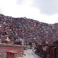 写真: 赤い街