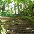 写真: 滝尾神社の石段