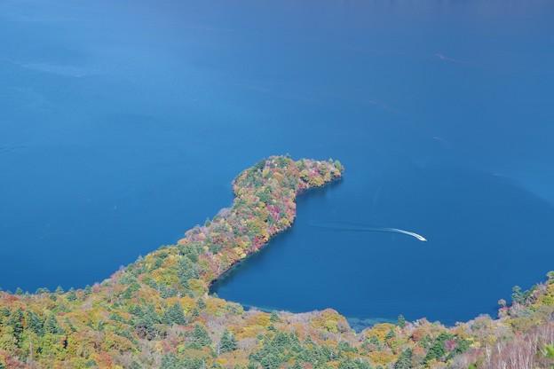 写真: Autumn colours