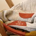 写真: bag3