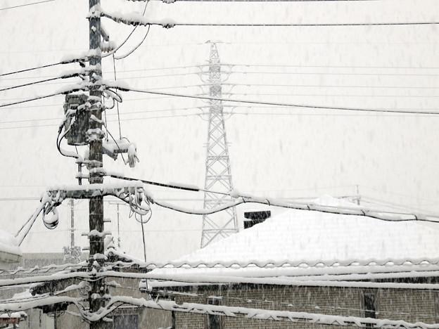 2017年1月15日 大雪
