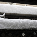 写真: 2017年1月15日 大雪