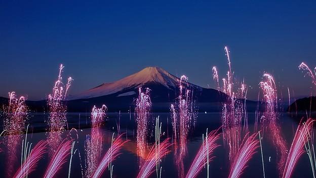Photos: Congratulations New Year(5)