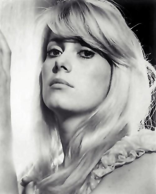 French Fairy Catherine Deneuve(13)