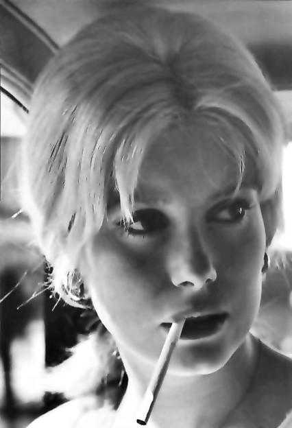 French Fairy Catherine Deneuve(20)