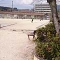 Photos: 本町公園