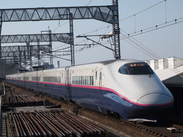 E2系とき   上越新幹線大宮駅02