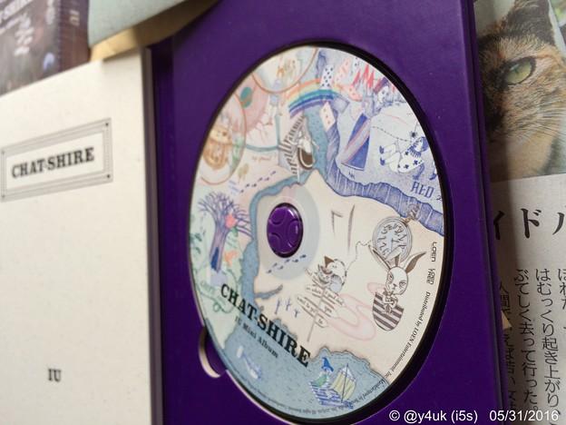 Photos: 素晴らしい音楽は素晴らしい ~CHAT-SHIRE
