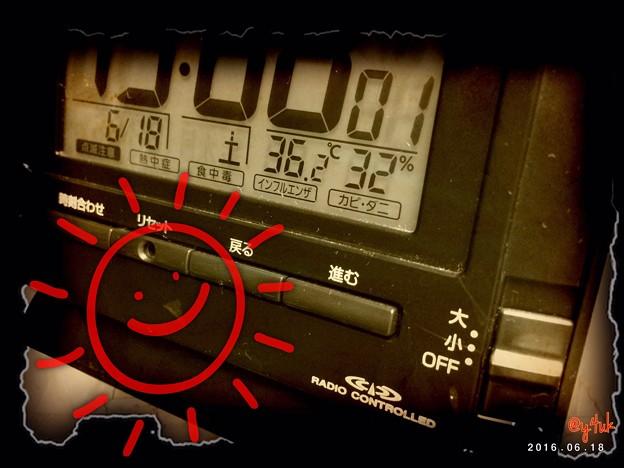 36.2℃ ~再び梅雨の晴れ間すでに猛暑日