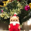 写真: サンタは吊られていた ~little Xmas