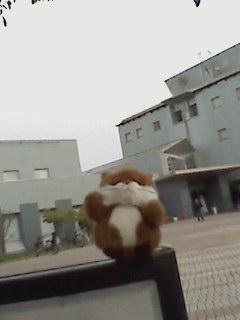 写真: 川崎市国際交流センターでした。