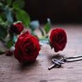 写真: バラとクロス