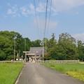 Photos: 石部神社1 社叢
