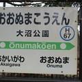 函館本線駅めぐり(19)大沼公園駅+(20)池田園駅