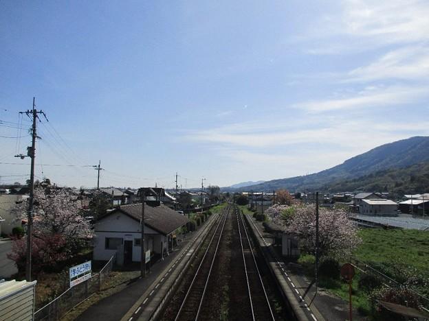 Photos: gaku_23