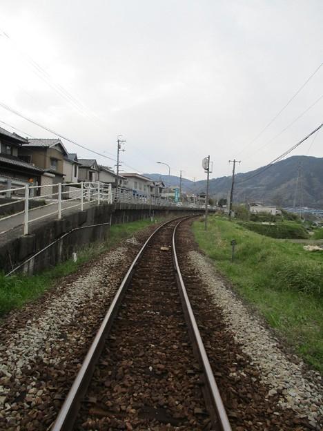 Photos: 03tsukudatsuzi_25