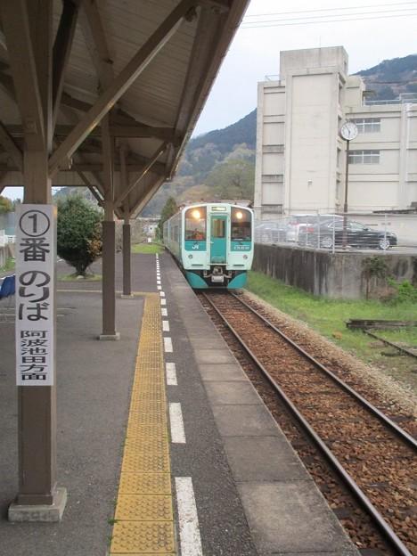 Photos: 03tsukudatsuzi_50