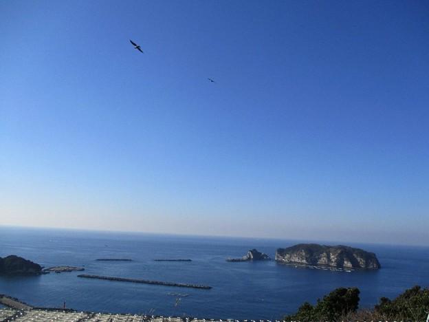Photos: awakatsuyama_20
