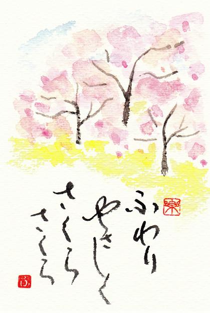 桜 by ふうさん