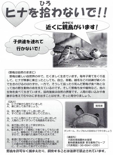 大阪府動物愛護キャンペーンポスター