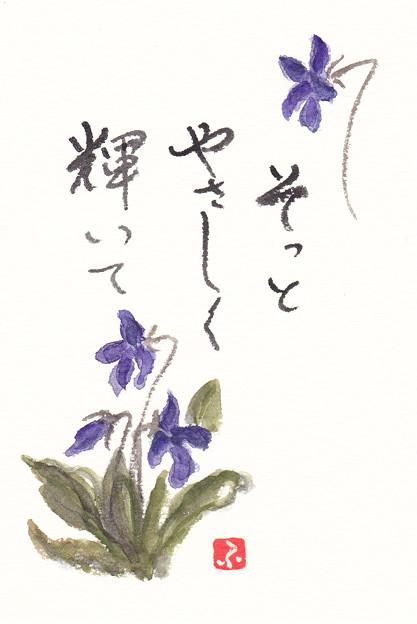 写真: スミレ by ふうさん