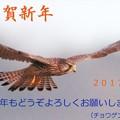 Photos: 新年のご挨拶(1)
