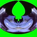 Photos: カエルの歌-01b