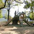 Photos: 子供の森公園_通称[かいじゅう公園]-08