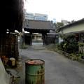 写真: 善福寺-01山門・本堂a