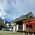 写真: 法禅寺_お堂と杉森稲荷の鳥居-01b