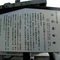 写真: 法禅寺-流民叢塚碑_info
