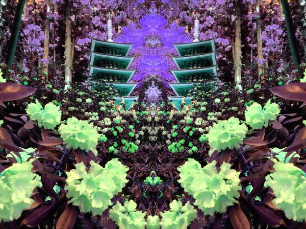 花の寺-01
