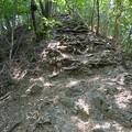 サス沢山への登山道の岩場