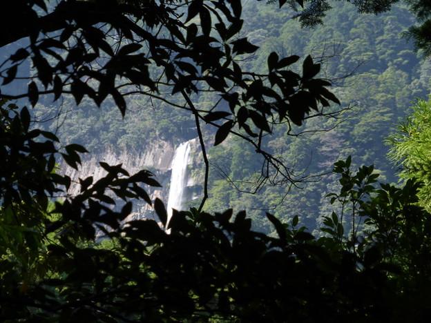 大門坂からの那智の滝
